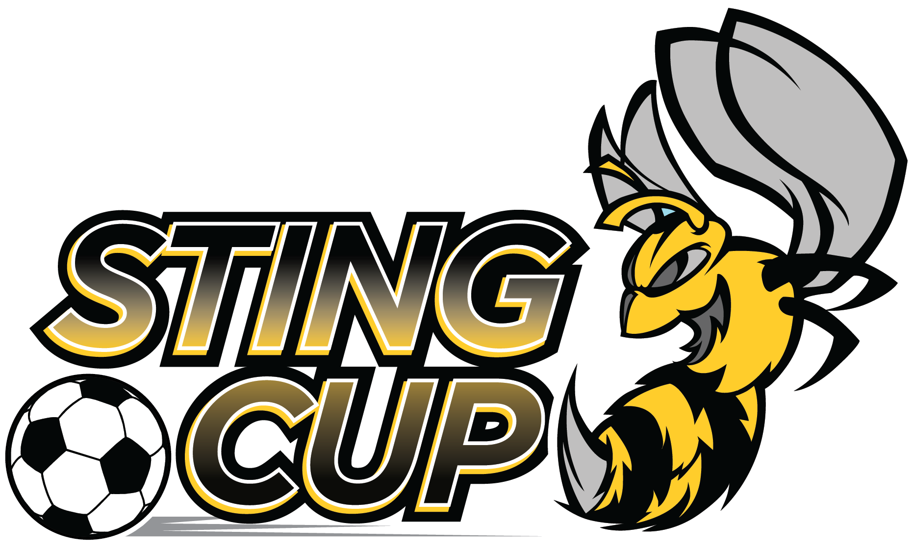 sting cup banner 2